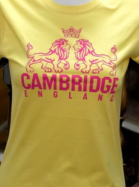 Ladies Cambridge Lions Skinny T-shirt